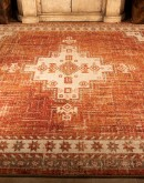 rug with rust colors